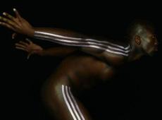 adidas Stripes >>